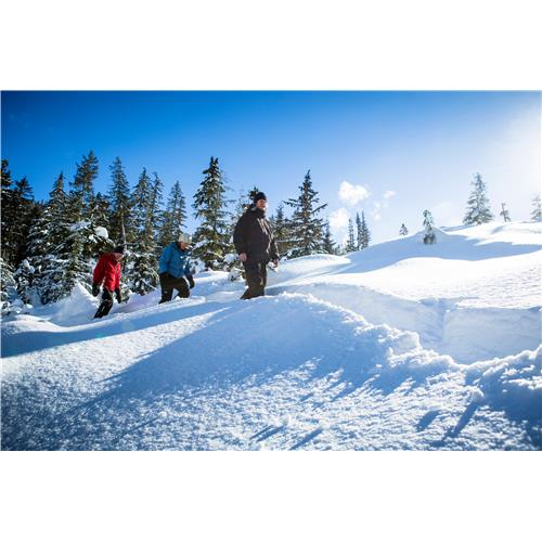 The Natural Mystic Snowshoe Tour - Adult - Whistler, BC